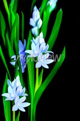 Fotomural Lazurowe Kwiaty
