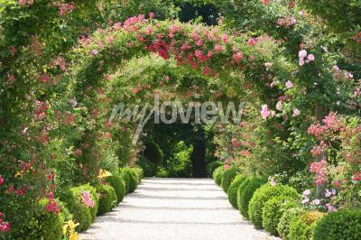 Fotomural Arco De Rosa No Jardim