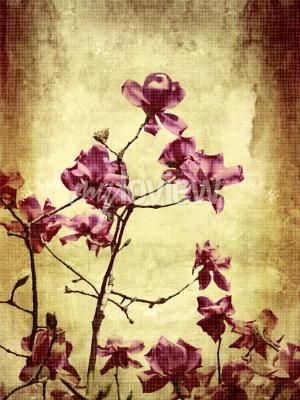 Fotomural Bonito, grunge, fundo, magnólia, flores