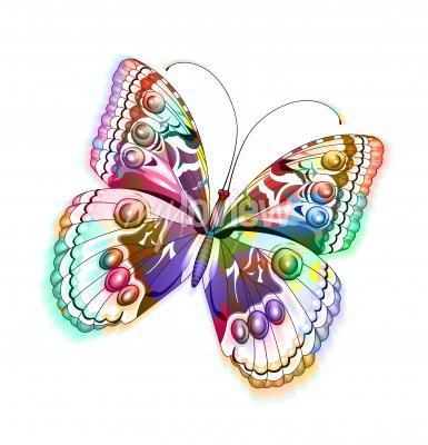 Adesivo Colorido isolado borboleta