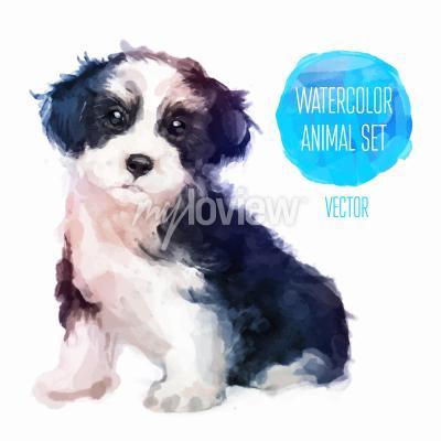 Poster Ilustração pintada à mão da aguarela do cão