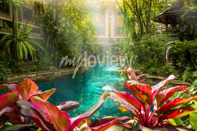 Fotomural Estilo da piscina da selva sob árvores e fundo da casa ao horário do sol