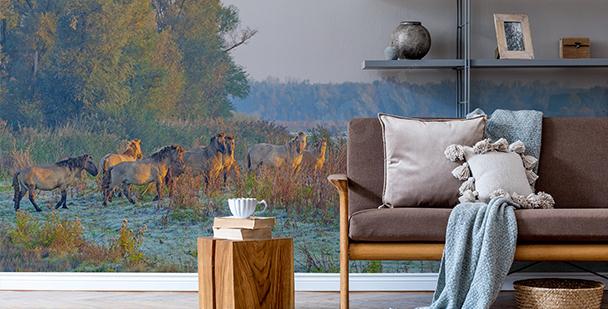 Papel de parede paisagem de Outono