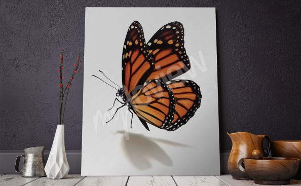 Quadro borboleta para a sala de estar