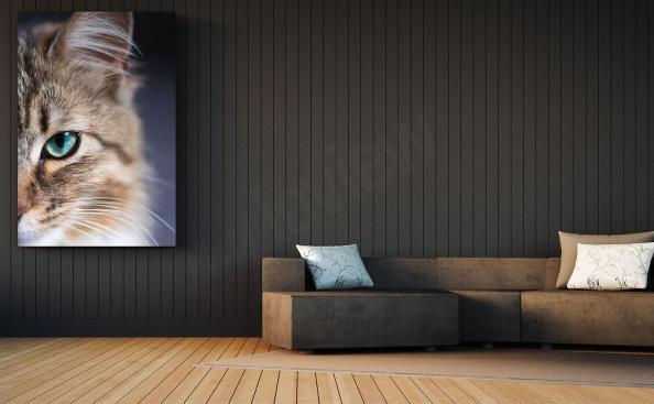 Quadro gato para a sala de estar