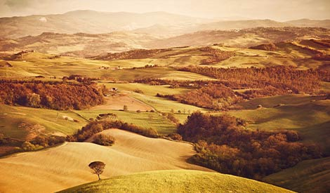 Toscania